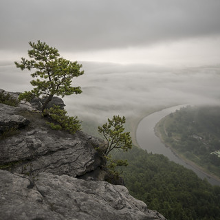 view from Lilienstein over the Elbe on a misty morning