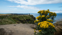 2018-07-21_Irland-270 (Wolfgang_L) Tags: countyclare irland ie