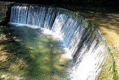 Pour faire passer la canicule ! 3 (Jean-Daniel David) Tags: rivière arnon suisse suisseromande nordvaudois jura forêt eau nature chute reflet