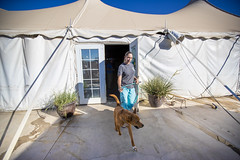 180623_PACC Phase two Dog Move_003 (PimaCounty) Tags: bond bonds sundt pacc move