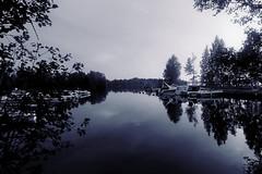 DSC06065rx100IV (jaaselin) Tags: finland suomi luonto finnishnature pirkkala pyhäjärvi lake summer sunset evening auringonlasku järvi koivu birch beach boats rowboats veneitä satama laituri blackandwhite mustavalkoinen pier photography colors