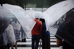 On Rainy Day_01 (Takashi.Tachi) Tags: