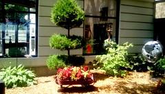Library garden - HWW (Maenette1) Tags: spiespubliclibrary garden wagon flowers windows menominee uppermichigan happywindowswednesday flicker365 allthingsmichigan absolutemichigan projectmichigan