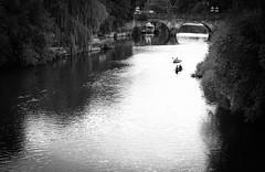 Shrewsbury River (LifeThroughMy50) Tags: river shrewsbury reflection rowing canon dslr uk england midlands 5d