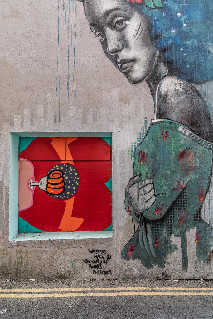 EXAMPLES OF STREET ART [URBAN CULTURE IN WATERFORD CITY]-142284