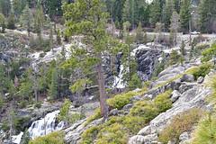 DEH_2618 (sobca) Tags: alpine california laketahoe laketahoebasinnationalforestlands nevada sierramountains emeraldbay