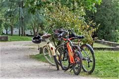 Bicicletas-_DSC2540 (peruchojr) Tags: parque castrelos vigo