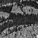 A Face of a Man on a Mountainside (Black & White, North Cascades National Park Service Complex)