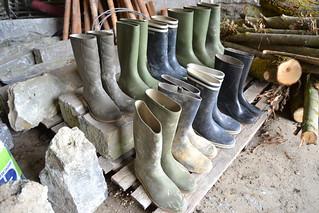 216 -- Collection of wellies -- Rubberboots -- Gummistiefel -- Regenlaarzen