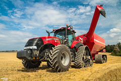 CTF Wheat Harvest 2018 | CASE IH // HORSCH (martin_king.photo) Tags: harvest harvest2018 ernte 2018harvestseason ctfharvest controllentrafficfarming ctf wheat grain combineharvester combine harvester new modernmachine summerwork powerfull martin king photo machines strong agricultural great czechrepublic agriculturalmachinery farm working modernagriculture landwirtschaft martinkingphoto moisson machine machinery field huge big sky agriculture power dynastyphotography lukaskralphotocz day fans work place yellow gold golden eos country lens rural camera outdoors outdoor caseih goldenhour colours landscape fields lines axialflow controlledtrafficfarming caseihmagnum magnum wide micheln michelintires magnum380cvx