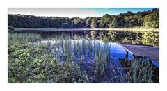 Kratersee Windsborn / Mosenberg (memories-in-motion) Tags: eifel vulkaneifel lake kratersee wasser blau grün sky clouds tree gras nature light last foveon sigmasd1merrill merrill