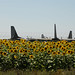 pisa aeroporto militare