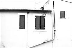 (von8itchfisk) Tags: olympus om10 film filmisnotdead analog architecture blackandwhite monochrome highcontrast washi 35mm selfdeveloped ishootfilm vonbitchfisk sanremo italy
