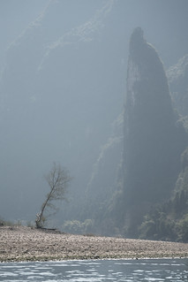 The Lone Tree of Yangshuo