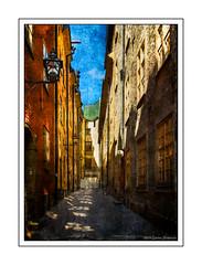 Side Street - Stockholm, Sweden (GAPHIKER) Tags: sidestreet side street cobblestone bike stockholm sweden shadows texture lenabemanna happyslidersunday hss