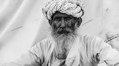 Herder |  Pushkar, Rajastan, India | 2012 (ayashok photography) Tags: rangderajasthan nikon ayashok ayashokphotography nikond700 nikkor24120mmvr rajasthan pushkar camelfair camels market india rajastan rajasthani ayp97493