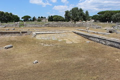 IMG_4939 Paestum (drayy) Tags: paestum rome roman ancient magnagraecia temple town italy europe campania greek