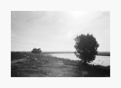 Leverage | 35mm Ilford HP5 Plus 400 (ForayIntoFilm) Tags: ilford minolta 28mm 35mmfilm analog film filmisnotdead istillshootfilm bayarea charlestonslough hp5 california explore