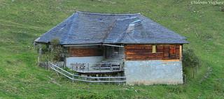 SF_IMG_8087 - Terroche, alpine pasture farm, Gruyère region - Switzerland