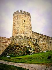 Kalemegdan, tower (Superoperater hero) Tags: beograd fortress kalemegdan medieval photos tvrdjava tower