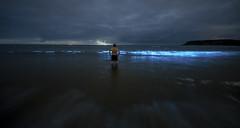 BLP Caswell 23 July 18 (Thomas Winstone) Tags: bioluminescentplankton canon canonuk landscape outdoors nature countryside outdoor 3lt my3leggedthing night sky moon moonlit astroscape thomaswinstonephotography longexposure sigma14mmf18art sea coast oceans ocean tide dinoflagellate aurora oceansaurora seasparkle noctiluca scintillans