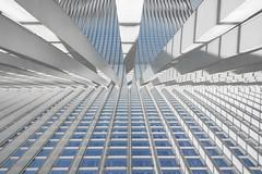 Architectural study on distance and depth (ARTUS8) Tags: symmetrie minimalismus fassade flickr innenarchitektur nikon28300mmf3556 highkey linien modernearchitektur nikond800 öffentlichesgebäude bahnhof lüttich