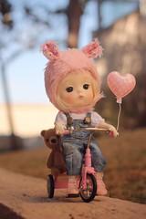 Morning ride 🚲 (·N a t h·) Tags: doll bjd mong secretdoll