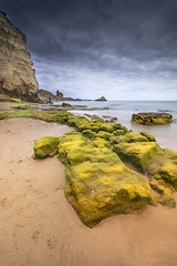 Green is a color of life (Sizun Eye) Tags: praiadostrêscastelos praia algarve portimao portugal cliffs beach rocks weeds sand sizuneye coast le longexposure poselongue nikond750 nikon1424mmf28 nikkor 1424mm nisifilters leefilters seaweed algue green vert