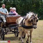 Paardenvriend (56 van 141) thumbnail