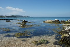 _DSF3443 (Martin P Perry) Tags: colwell colwellbay isleofwight wight island needles theneedles seaweed