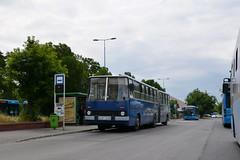 Ikarus 280.49 #BPI-972 (LukaszL99) Tags: örs vezér tere budapest budapeszt autobus bus ikarus 280 28049 bkv węgry magyarország busz hungary ungarn bkk