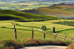 Sentiero (Zz manipulation) Tags: artambrosionizzmanipulation campagna landscape colline toscana poppy papaveri natura fiore casale cielo