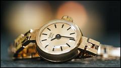 Tudor Royal (G. Postlethwaite esq.) Tags: canon40d canonefs60mmmacro dof macro tudorroyal beyondbokeh bokeh bracelet closeup depthoffield gold jewelry photoborder primelens selectivefocus watch