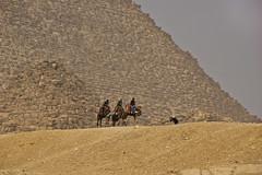 a photographer's hard life (obsidiana10) Tags: egypt sand camels pyramids