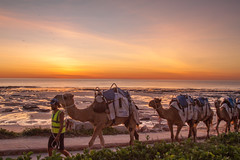 Sunset Walking with Camels at Cable Beach, Broome, WA (hectordotlee) Tags: rock sand waterfront sunset water camels outdoor canon fall canon500d attraction australia beach capturethemoment cablebeach 500d westernaustralia scenic travel sky tourist indianocean landscape broome home au