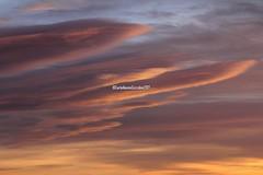 41 (CarloAlessioCozzolino) Tags: 41 compleanno birthday cielo sky tramonto sunset nuvole clouds sardegna sardinia