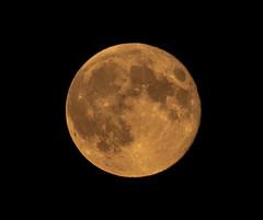 Moon #3 Berlin (J4yP) Tags: germany deutschland berlin night nacht nikon d3300 sigma telephotolens teleobjektiv sommer summer 2018 dark dunkel moon mond lunar