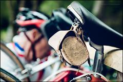 On the rack (G. Postlethwaite esq.) Tags: dof derbyshire ecclesbournerailway eroicabritannia highpeakjunction leawoodpumphouse bag bicycle bike bokeh classicbikes closeup cyclist depthoffield fullframe photoborder rider saddle selectivefocus