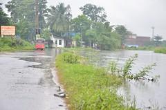 DSC_5878 (madelinedahm) Tags: urbanflooding srilankaflood srilanka colombo kelaniganga floodplain drainagedisaster risk reduction iwmi