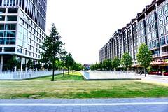 Rotterdam city view (qqazwws18) Tags: taiwan sonya6000 sony cityview city rotterdam netherlands holland travel