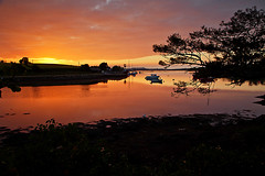Strangford Lough Sunset (David in SK6) Tags: strangfordlough
