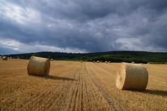 Le temps se gâte (Croc'odile67) Tags: nikon d3300 sigma contemporary 18200dcoshsmc paysage landscape nature ciel cloud sky nuages campagne champ rundball