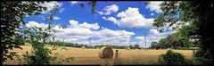 Ma campagne en été (Fotomaniak 53) Tags: panorama été campagne mayenne 2018 canon 550d eos raw fusion nuages cloods rural nature balade photographie numérique fotomaniak53 célinel botte