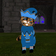 This one is from the sELFies! winter collection 2014 (Alexandra Twitchy) Tags: firestorm secondlife kittycats breedables virtual reality secondlife:region=bastet secondlife:parcel=castleincantatusforestdragonsmeldhamlet secondlife:x=16 secondlife:y=232 secondlife:z=58