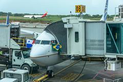 Copa B738 (PTY) (ruifo) Tags: nikon d810 aviacion aviación aviacao aviação aviation airport aeropuerto aeroporto nikkor 24120mm f4g ed vr panama city cuidad panamá tocumen tocumén intl copa airlisnes boeing b737800 737800 b737 737 b738 738 gate puerta portão embarque 7378v3 b7378v3 hp1852cmp cm342 cm324 innaugural flight fortaleza brasil brazil pty for mpto sbfz
