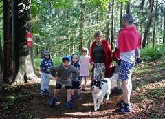 IM WALD . IN THE WOOD (LitterART) Tags: wood forest wald österreich austria steiermark styria sonyrx100 hund dog chien kinder enfants children