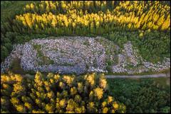 Steinar (Jonas Thomén) Tags: stones stenar road väg trees träd woods forest skog flygfoto aerial dji mavic air