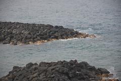 Playa de las Américas, Тенеріфе, Канарські острови  InterNetri  790