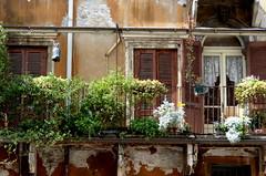 noch ein Balkon-another balcony (Anke knipst) Tags: balkon balcony verona italien italy piazzadelleerbe