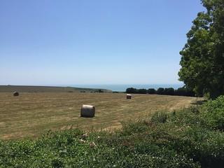 Gayles Farm
